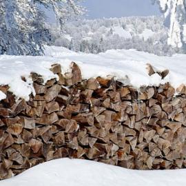 Projet : «Du bois de chauffage à la maison » pour les réfugiés tchétchènes en Géorgie