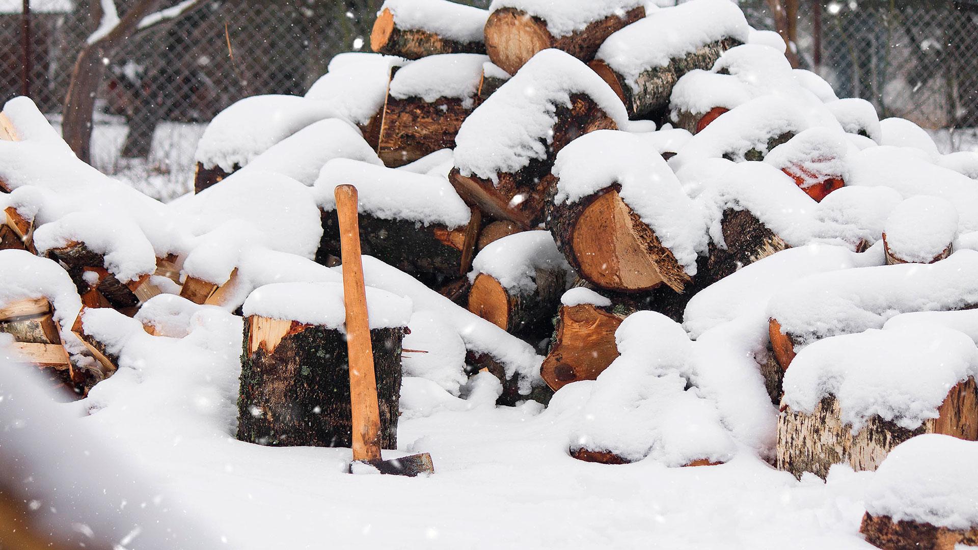 Projet: «Du bois de chauffage à la maison»