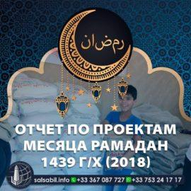 Отчёт по проектам месяца Рамадан 1439 г/х (2018)