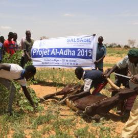 Аль-Адха 2019 в Нигере
